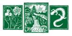 Highlands Biological Foundation